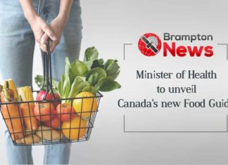 Canada Food Guide 2019