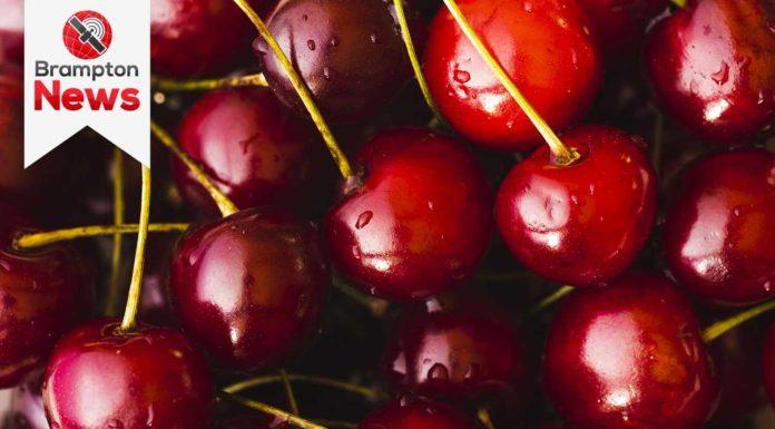 EU Canadian cherries