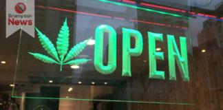 cannabis retail lottery winner